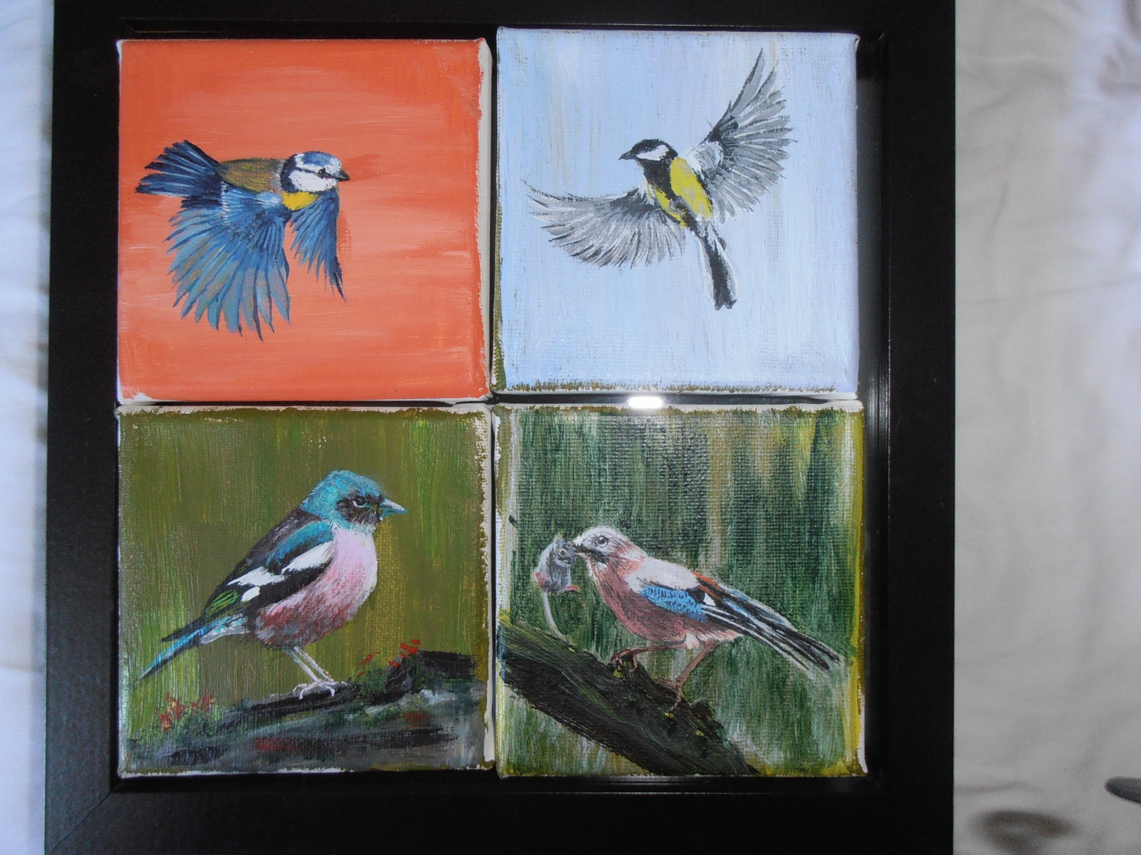 4 x zangvogel elk 10 bij 10 cm en € 50