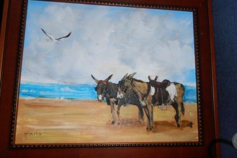 2 ezeltjes op het strand