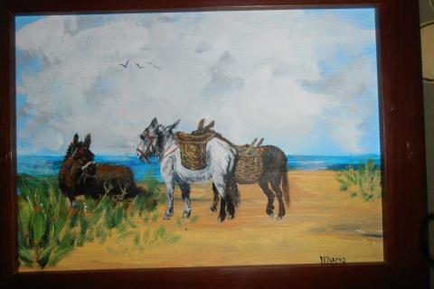 3 ezeltjes op het strand