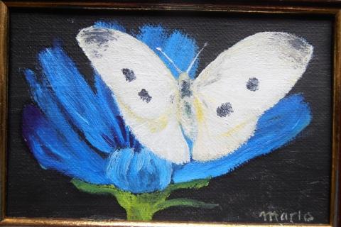 blauwe bloem met koolwitje