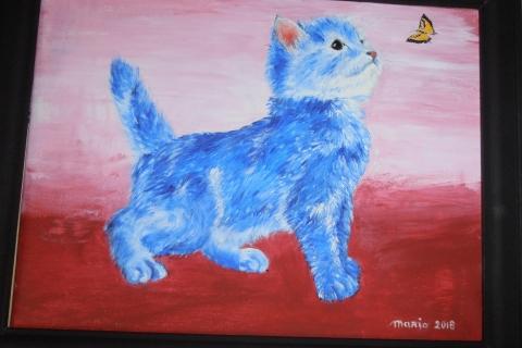 blauwe kater